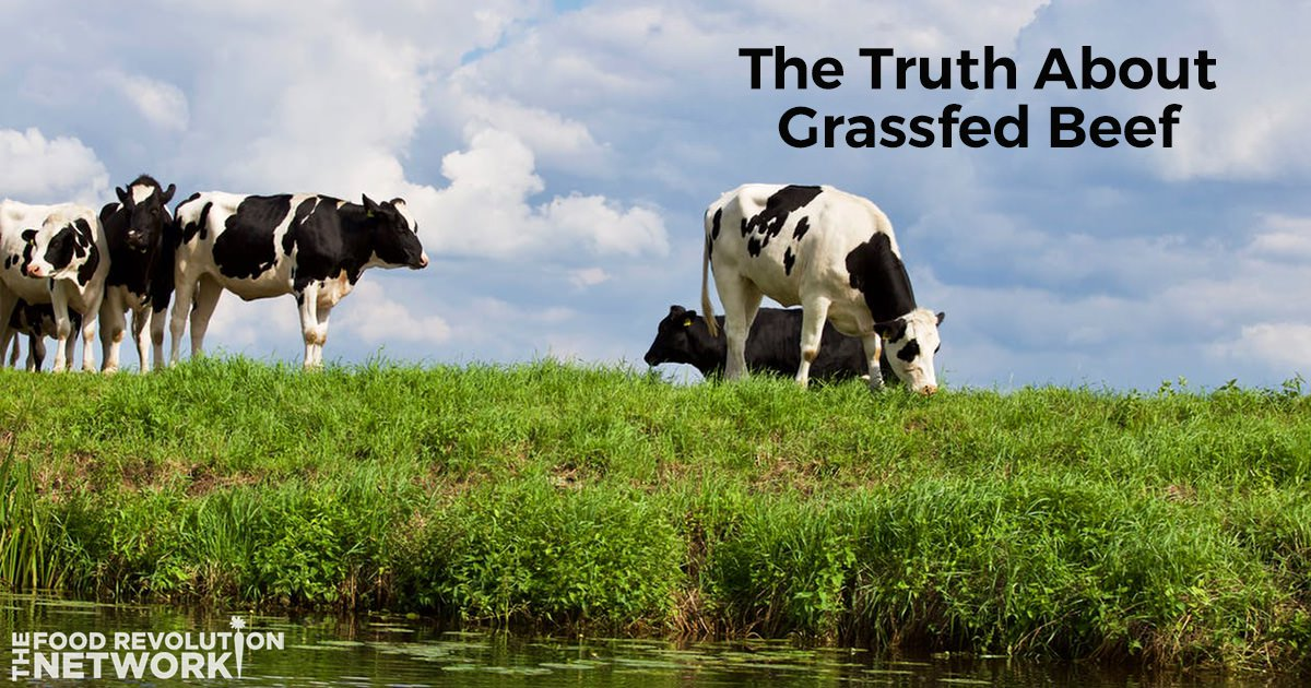 The Truth About Grassfed Beef