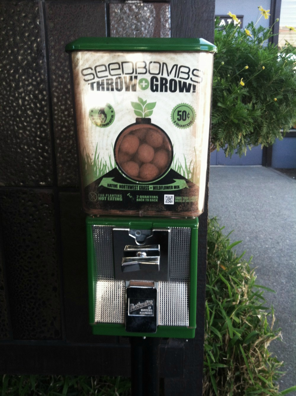 Seed bombs for guerrilla gardening